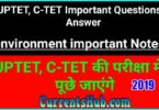 CTET UPTET Samvida Teacher