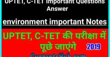 CTET UPTET Samvida Teacher