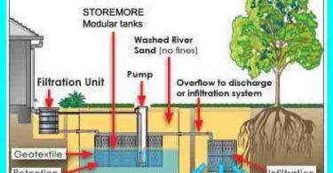Water Harvesting Essay