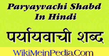 Hindi Paryayvachi Shabd PDF