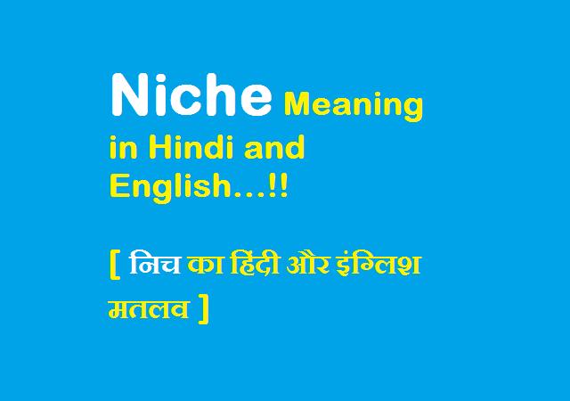 Niche Meaning in Hindi (निच का हिंदी में मतलब)